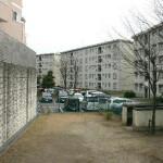 平井7丁目スーパー堤防